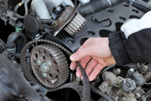 Timing belt Longmont